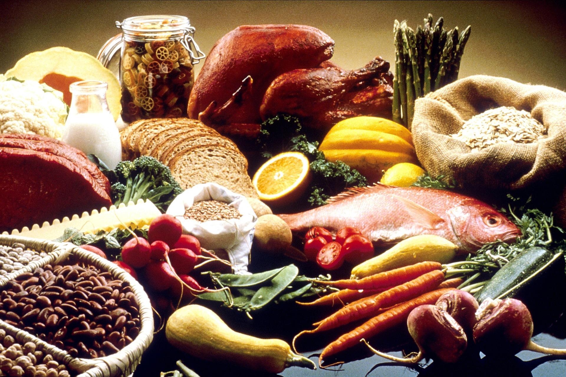 makanan sehat dan manfaat zat gizi